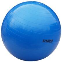 Gimnasztikai labda, 55 cm SPARTAN